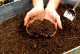 Journée de distribution du compost à Reims le 31 mars