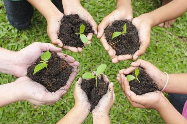 Le compostage : une solution simple et économique