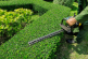 Aménagement des espaces verts dans le village