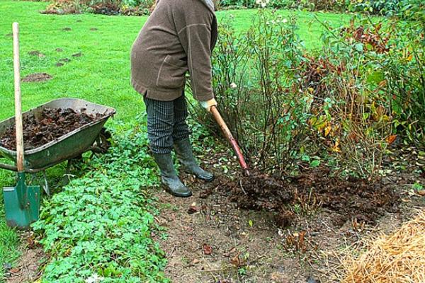 Le Grand Reims vous offre du compost - Samedi 4 avril
