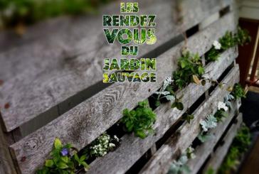JOURNÉE EUROPÉENNE <br>DU DÉVELOPPEMENT DURABLE <br>Mercredi 5 juin 2019 <br>Jardin sauvage