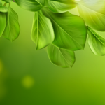 Sillery obtient le label <br>« Commune Nature 3 libellules »