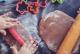 Cuisiner avec vos enfants pour les occuper pendant la pandémie