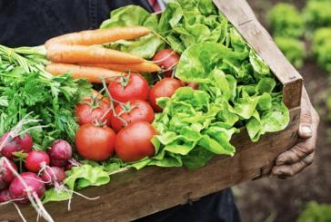 Fruits et légumes à Sillery