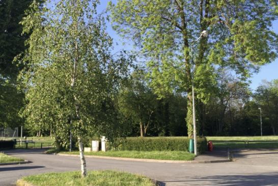 L'arrêté préfectoral du 15.04.2020 INTERDIT JUSQU'AU 11 MAI l'accès au parcs, jardins, forêts, berges, plans d'eau...