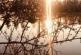 Corps & herboristerie - un monde en moi - Sam 20 mars