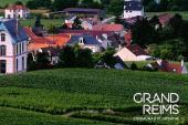 Construisons ensemble le Grand Reims 2030 - Enquête jusqu'au 30 avril