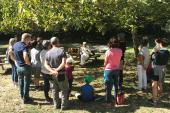 Action locale et vie associative